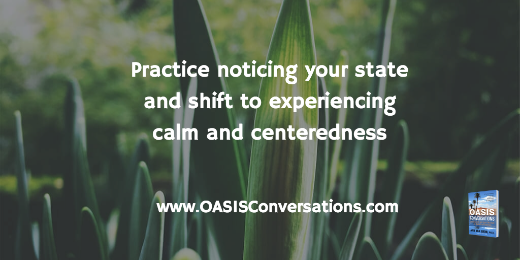 Find Your Oasis Amidst Disruption